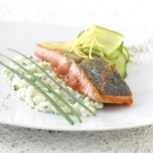 Salmon grilled on the skin with creamy cucumber risotto