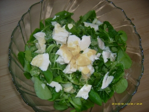 Corn salad with mozzarella