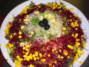 Salad With Beetroot Sprouts And Alfalfa Sprouts